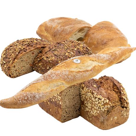Nur Brot
